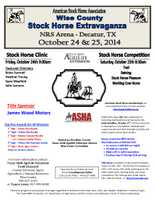 Wise County Stock Horse Extravaganza