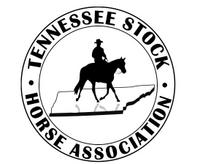 tennessee stock horse.jpg